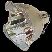 3M E6D Lampe ohne Modul