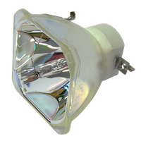 3M X55i Lampe ohne Modul