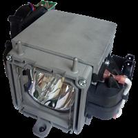 INFOCUS DP6500X Lampe mit Modul