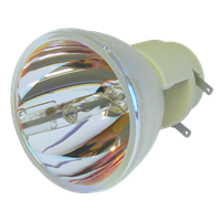 INFOCUS IN114X Lampe ohne Modul