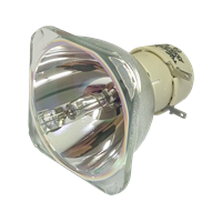 INFOCUS IN118HDLC Lampe ohne Modul