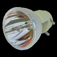 INFOCUS IN124 Lampe ohne Modul