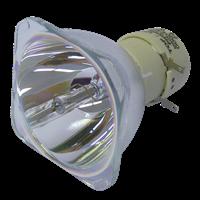 INFOCUS IN2101 Lampe ohne Modul