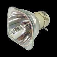 INFOCUS IN3926 Lampe ohne Modul
