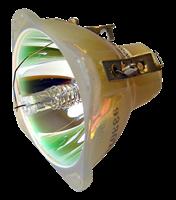 INFOCUS LP70+ Lampe ohne Modul