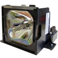 INFOCUS LP810 Lampe mit Modul