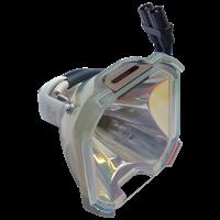INFOCUS LP810 Lampe ohne Modul