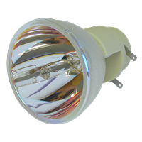 INFOCUS SP-LAMP-054 Lampe ohne Modul