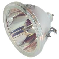 LG 62CX4D-UB Lampe ohne Modul