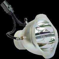 LG AJ-LDX6 (6912B22008D) Lampe ohne Modul